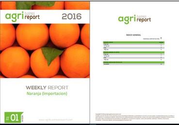 Agribusiness Report